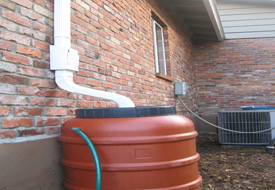 rain-barrel-with-drain-guard-copy